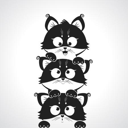 cute kitten: cute kitten Stock Photo