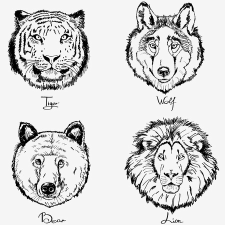 wolf head: animals