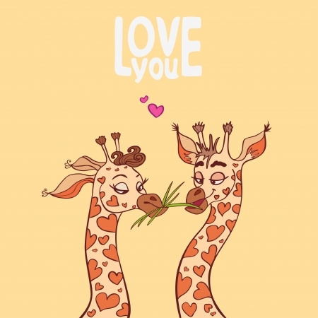 Funny couple in love giraffes photo