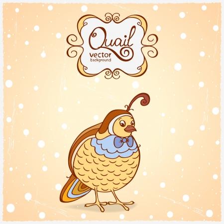 CODORNIZ: ilustración divertido personaje de una codorniz pájaro