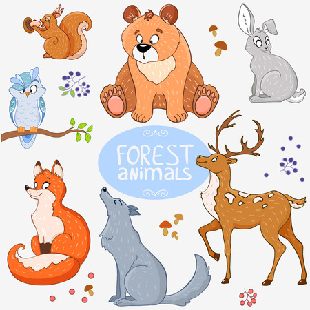 squirrel isolated: Illustration set of cute animals of the forest