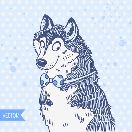 alaskabo: Koncept tecknad illustration söt husky hund Illustration