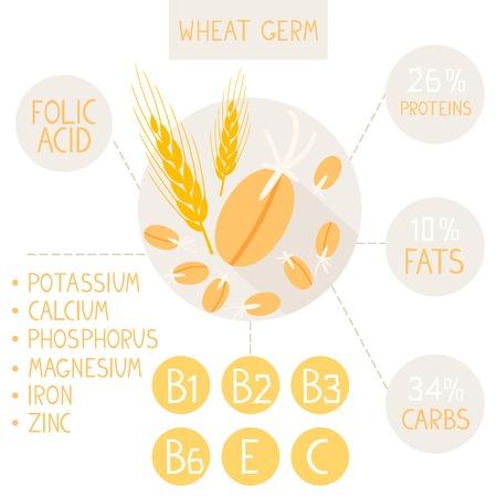 piatti infographic proprietà utili di germe di grano germinato Vettoriali