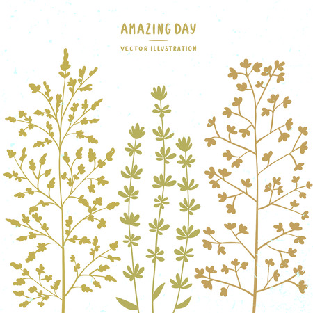 gently: Stylish beautiful and gently silhouette wild flowers. Vector illustration Illustration