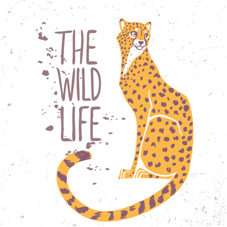 Amazing animal cheetah with sample text - the wild life
