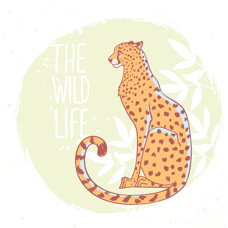 Amazing animal cheetah with sample text - the wild life.