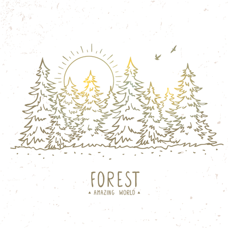 Beautiful silhouette sketch amazing spruce forest with sunrise. Stylish vector illustration