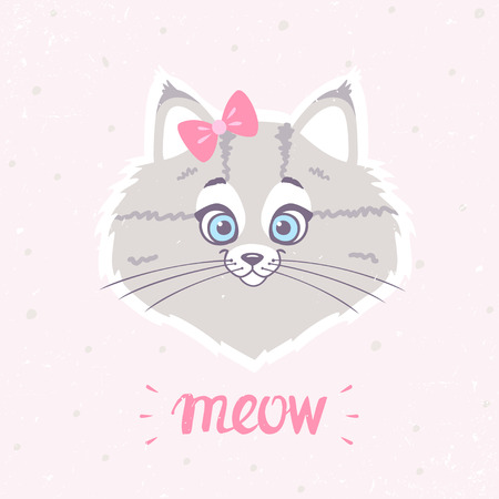 meow: Cute kitty on plain background