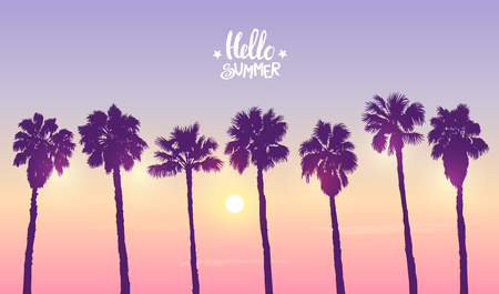 A palm sunset isolated on  cool  background. Illustration