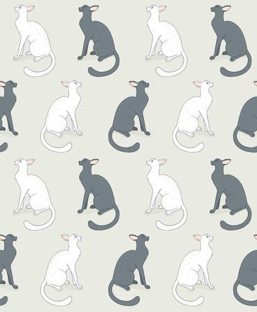 seamless white cat