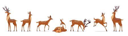 ensemble de cerfs