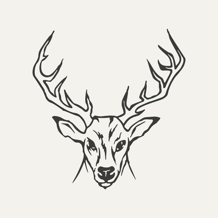 whitetail deer: illustration of deer. Black and white style