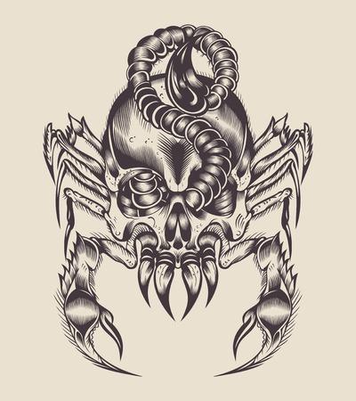 toxicity: Illustration of a monster. Scorpion with skull. Illustration