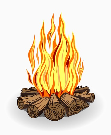 firewood background: Illustration of isolated camp fire. Colored on white background.