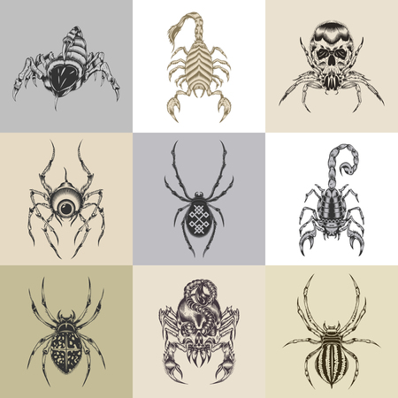 It is nine tattoo illustration with representatives of arachnids.