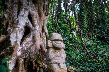 historians: San Agustin, Colombia: A mysterious statue of a male person  stands in the rainforest next to an old tree with large roots. The statues of San Agustin are a mystery to historians.