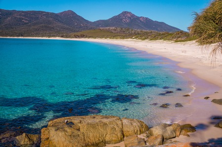 the bay: Wineglass Bay - The beautiful beach Wineglass Bay on the east coast of Tasmania has crysal clear water.