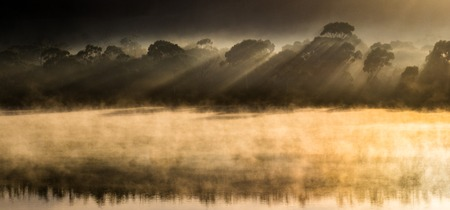 Mist emerges from the cold waters of the Tasmanian sea near Triabunna as the warm sunlight shines through a forest and provokes a beautiful reflection Banco de Imagens