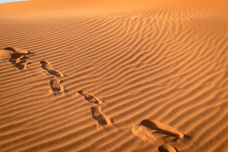 Footprints in the sand at the sahara desert, Merzouga, Morocco