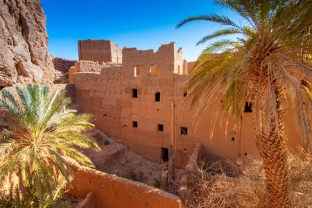 Tall mud brick houses are surrounded by palm trees in Tinghir, Morocco