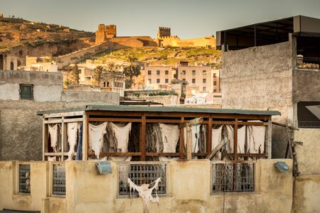 Drying leather on top of a building in tannery in Fez, Morocco