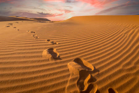 Footprints in the sand at the Sahara desert at sunset - Erg Chebbi, Morocco Banco de Imagens
