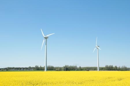 Windturbinen Standard-Bild - 23739497