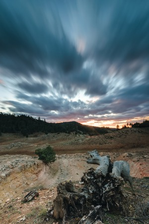 treacherous: Storm clouds in a bleak landscape at sunset in the National Park of Ifrane, Morocco. in the foreground is a snag.