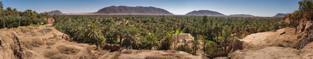 algeria: Panoramic view over oasis of date palms, Figuig, Morocco
