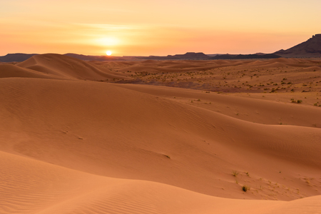Ouzina sahara desert dunes sunset, Morocco
