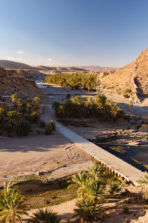 Oáza palmových stromů, Oued Tissint, Maroko