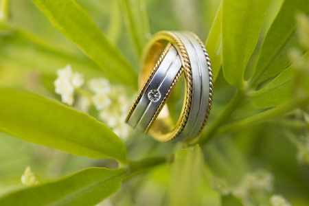Wedding Ring is a prefect symbol of Love Stock Photo