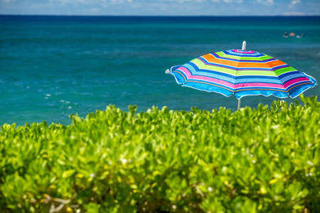 the colouful beach umbrella is on the tropical sunny beach, summertime, vacation mood