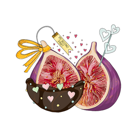 Figs in love and in chocolate. Hand drawn illustration from fruit love and sweet collection on white background.