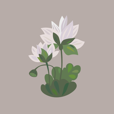 lotus flower icon water lily isolated vector illustration