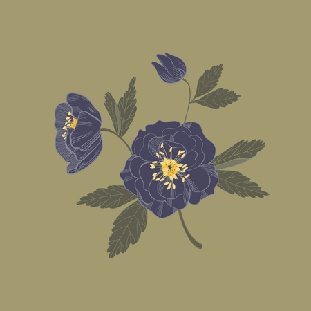 onyx: Vector illustration of  black onyx helleborus flowers isolated on khaki green. Beautiful floral element for your design Illustration