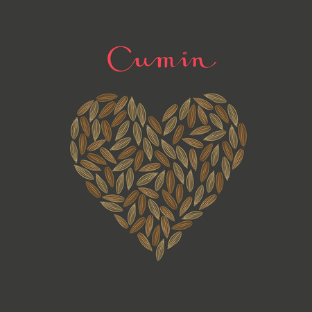 Cumin seeds spice in a heart shape on the black background vector isolated illustration Vettoriali