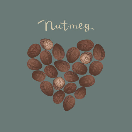 Nutmeg spice in a heart shape on the blue background vector isolated illustration