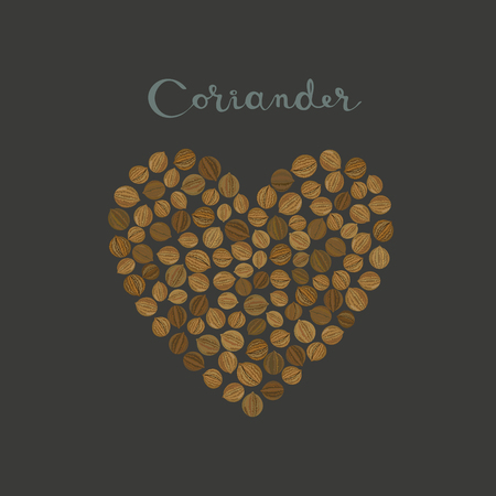 Coriander seeds spice in a heart shape on the black background vector isolated illustration