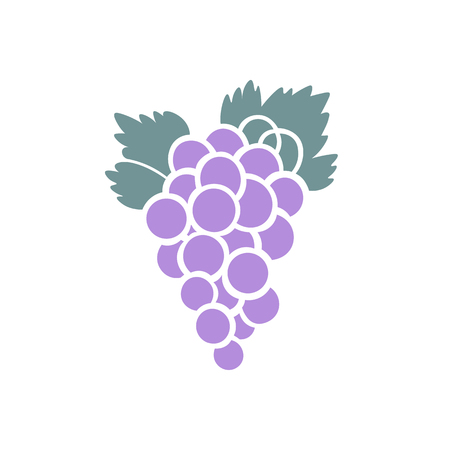 A bunch of purple grapes icon design isolated on white vector illustration