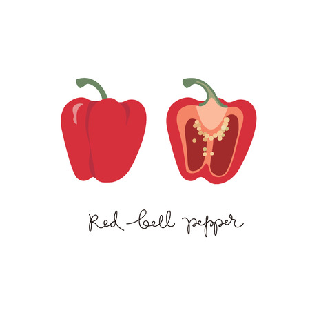 Red bell pepper, set of whole and half sweet paprika on a white background vector design illustration isolated on white