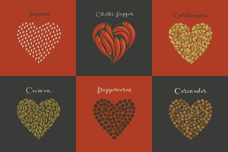 Set of spices in the heart shape. Sesame, Cumin, Cardamom, Chili, Peppercorns, Coriander isolated vector illustration.