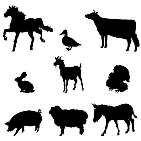 Farm animals silhouette set, black image isolated on white background Illustration
