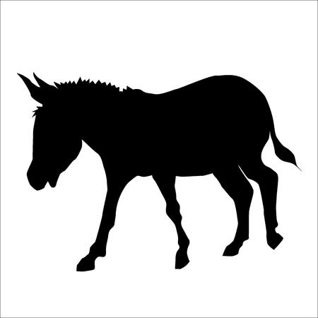 donkey: Donkey silhouette, black animal image isolated on white