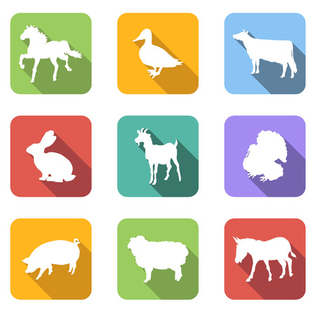 cock duck: Farm animals flat icons set for any design