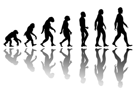 neanderthal: Man evolution. Silhouette progress growth development. Neanderthal and monkey, homo-sapiens or hominid, primate or ape with weapon spear or stick or stone Illustration