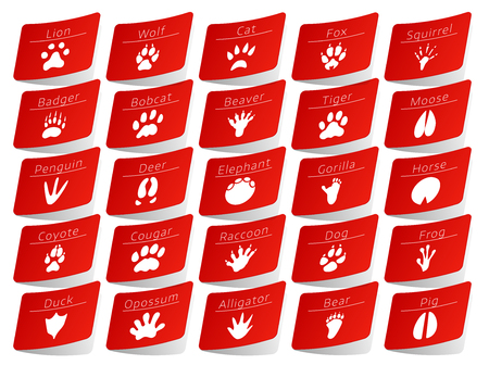 track pad: Animal track red stickers set, with names on white background Illustration