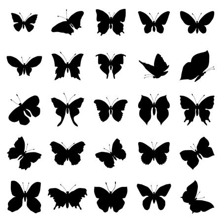 mariposa: Conjunto de la silueta de la mariposa aislada en el fondo blanco