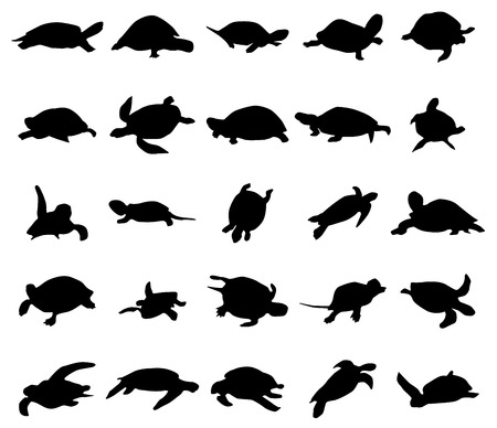 Turtle silhouettes set isolated on white background