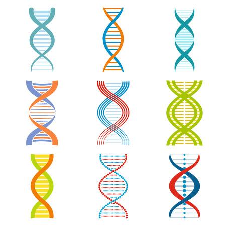 DNA and molecule symbols set for chemistry or biology concept design Vectores